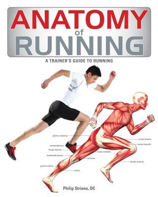 Anatomy of Running By Striano, Philip (COR)